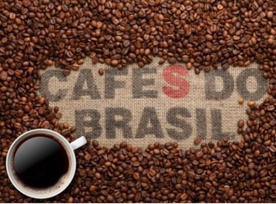 فروش دانه قهوه کشور برزیل