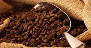 پخش بهترین دانه قهوه