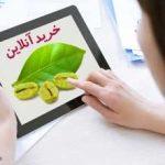 خرید آنلاین دانه قهوه سبز مرغوب