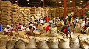 دانه قهوه درجه یک کشور کنیا