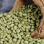 دانه قهوه سبز دراستان بوشهر