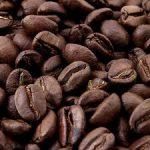 فروش دانه قهوه ویتنام