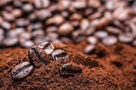 خرید دانه قهوه مکزیک
