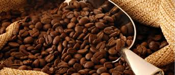 پخش عمده دانه قهوه