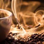 مرکز پخش دانه قهوه ویتنام