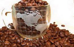 عرضه با کیفیت دانه قهوه کاستاریکا