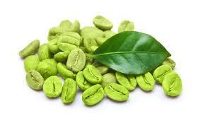 عرضه بهترین دانه قهوه سبز برزیل