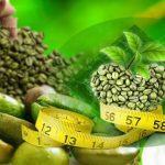 عرضه مستقیم دانه قهوه سبز با کیفیت