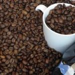 عرضه مرغوب ترین دانه قهوه جاوه
