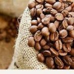 فروش دانه قهوه با کیفیت اندونزی