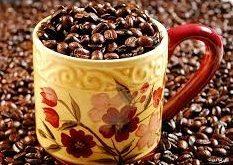 عرضه دانه قهوه نیکاراگوئه