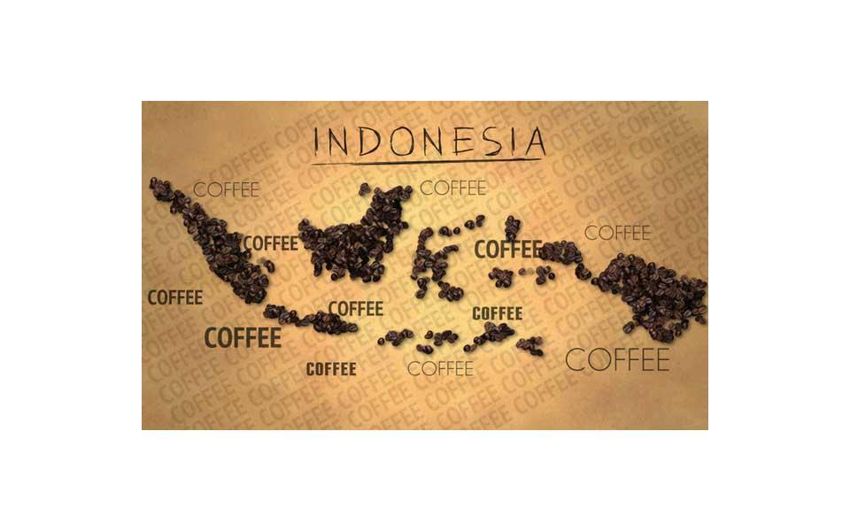 راهنمای خرید قهوه اندونزی