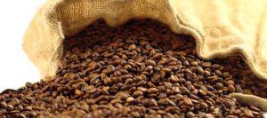 بهترین دانه قهوه ویتنام