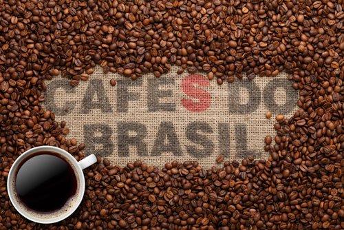 قیمت دانه قهوه برزیل