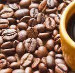 عرضه انواع دانه قهوه اندونزی