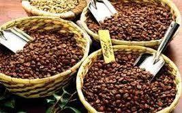 خرید بهترین دانه قهوه مکزیک