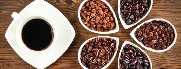 عرضه انواع دانه قهوه کشور برزیل
