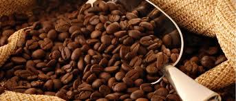 بازار خرید دانه قهوه کلمبیا