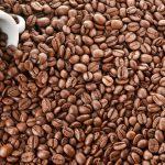 عرضه مستقیم دانه قهوه کشور ویتنام