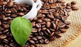 سایت توزیع دانه قهوه مرغوب جاوه