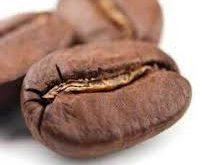 پخش عمده انواع دانه قهوه کشور اندونزی