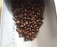 فروش بهترین دانه قهوه سرجیو