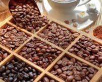 خرید مستقیم انواع دانه قهوه برزیل