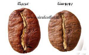 خرید و فروش دانه قهوه عربیکا