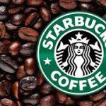  خرید و فروش قهوه استارباکس Starbucks Coffee