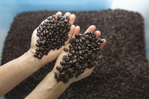 فروش عمده دانه قهوه