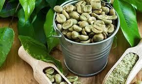 قیمت فروش عمده دانه قهوه خام