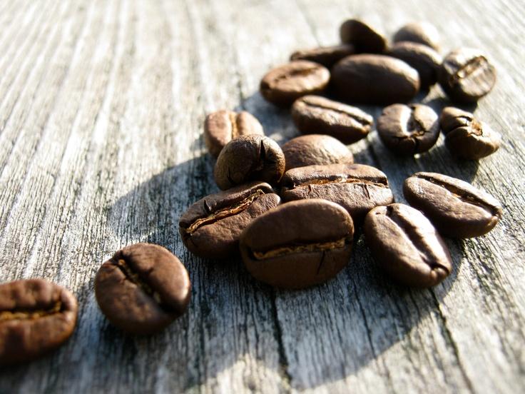 قیمت انواع دانه قهوه