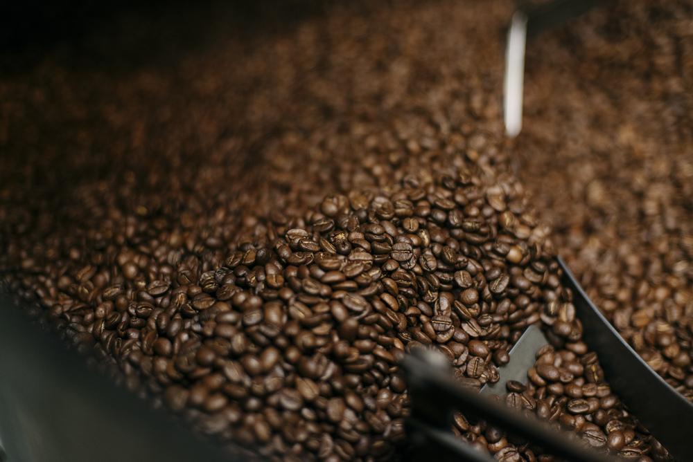 فروش دانه قهوه در بوشهر