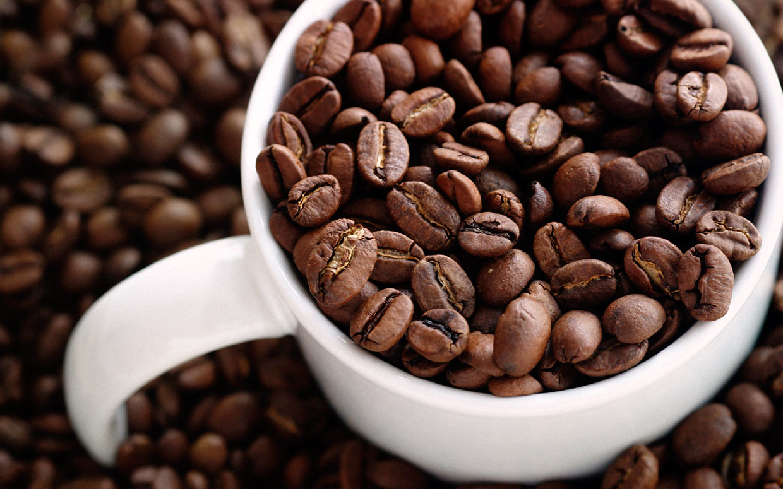 قیمت قهوه پی بی