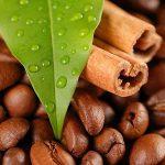 قیمت قهوه هندوراس