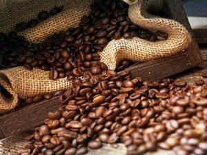 قهوه عربیکا هندوراس