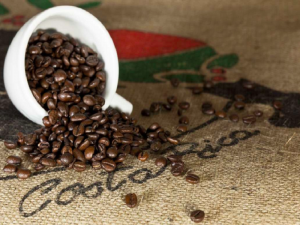 فروش قهوه کاستاریکا