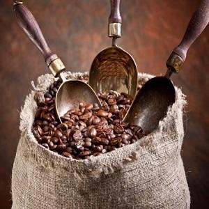 نمایندگی فروش قهوه کاستاریکا