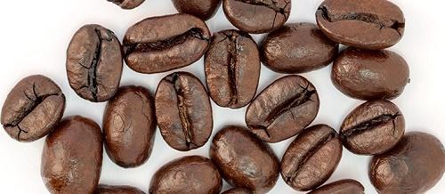 خریدار قهوه عمده