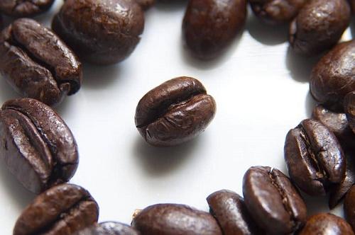 فروشنده قهوه پیبی