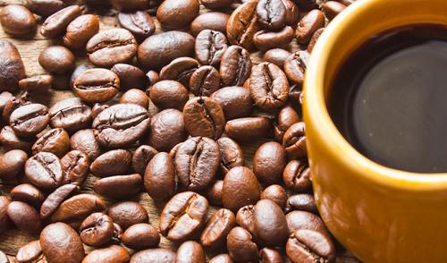 فروش قهوه عمده
