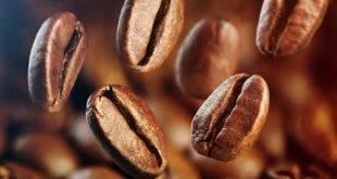 محصولات قهوه