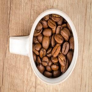 خرید قهوه پلیتنشن