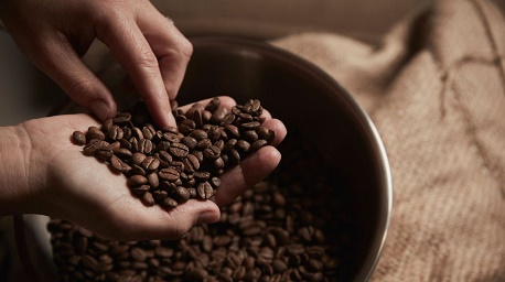 خرید قهوه خوب