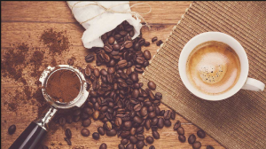 پخش قهوه ناب