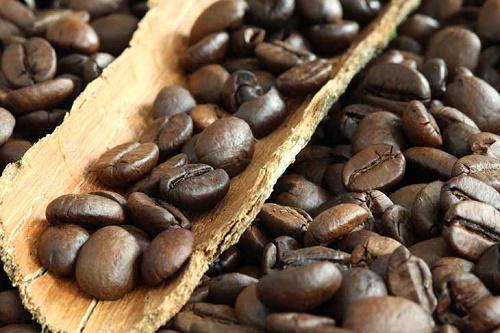 فروش قهوه خارجی