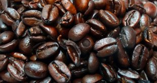 فروش قهوه اصل