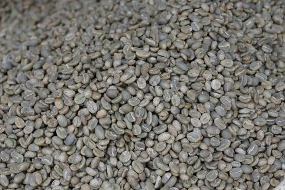 پخش قهوه کلمبیا