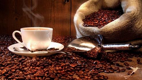 عرضه قهوه گلد اکوادور