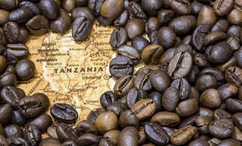 قیمت قهوه تانزانیا